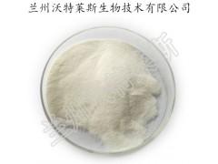 乳糖酶 厂家供应乳糖酶 β-半乳糖苷酶