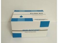 供应莱克多巴胺检测试剂盒