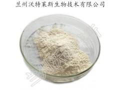 黄瓜粉 食品级果蔬粉 厂家现货供应 一公斤起订 黄瓜汁粉