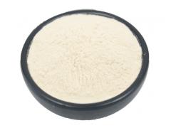 岩白菜素98%   岩白菜提取物  厂家长期供应