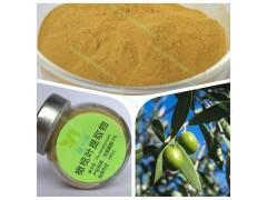 橄榄叶提取物羟基酪醇5%-20%