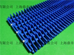 上海鼎幸突肋型网带 凸肋型网链 突肋直行网带厂家
