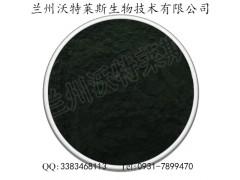 小球藻粉 绿藻粉 厂家直销 99.9%