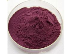 黑加仑粉 厂家直销 黑醋栗粉 紫梅粉 黑加仑粉水果粉