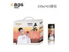 火锅店五谷杂粮饮品245ml10罐装绿道场招商