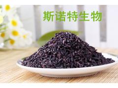 紫米提取物 紫玉米粉 紫糯米 浸膏厂家现货 量大从优 可试样