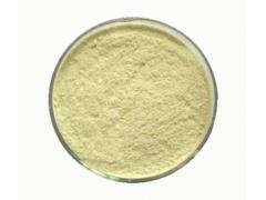 松花粉98% 破壁松花粉 马尾松花粉  一公斤起订