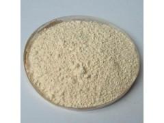 无患子提取物 无患子皂甙 20%优质无患子皂苷