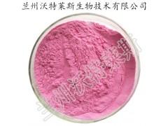 蓝莓粉  蓝莓纯粉 蓝莓果汁粉 水溶性