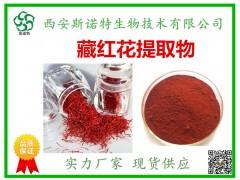 藏红花提取物20:1 藏红花粉 斯诺特厂家 优质供应