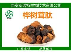 食品级桦树茸小分子肽 桦树茸多肽 桦褐孔菌肽粉 厂家热销