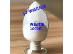 1000亿粪肠球菌