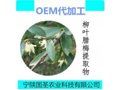 柳叶腊梅提取物  柳叶腊梅速溶粉 新资源食品 代加工