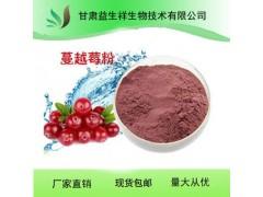 蔓越莓粉 厂家直销 水果粉 小红莓 蔓越桔粉  鹤莓粉