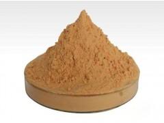 水溶性山楂浓缩粉 固体饮料 厂家现货 山楂果粉