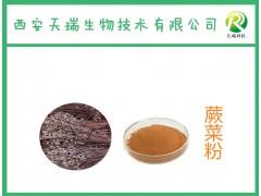 蕨菜提取物-厂家  蕨菜粉   实力厂家