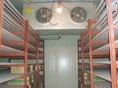 食品保鲜库建造|冷冻库|速冻库|建冷库