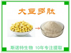 大豆肽 大豆多肽 大豆低聚肽 生产厂家