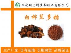 白桦茸多糖 规格30% 白桦茸提取物  生产厂家