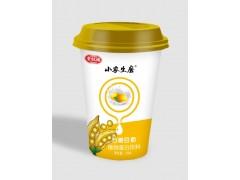 学生杯装豆奶480ml*24杯装金旺福招商
