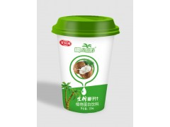 杯装椰子汁饮料工厂直销480ml*24杯装招商加盟