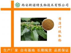 布渣叶粉 布渣叶提取物 破布叶浓缩粉 薢宝叶浸膏粉 价格