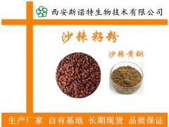 生产厂家 沙棘籽粉95% 沙棘籽提取物 沙棘黄酮