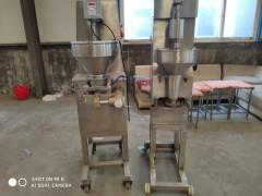 生产肉丸设备厂家