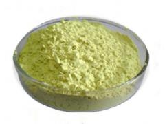 绿茶粉 99% 绿茶速溶粉 喷雾干燥  厂家现货