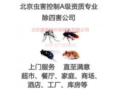 北京除四害服务灭蟑灭鼠A级资质专业团队上门服务家庭酒店灭蚊蝇