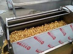 土豆莲藕毛辊清洗机