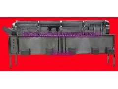 高效率省人工型香瓜分选设备