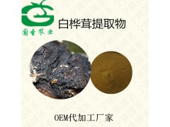 桦褐孔菌提取物  桦褐孔菌粉比例提取含运费 食品级原料