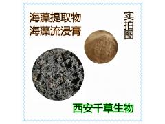海藻提取物 厂家生产动植物提取物 定做海藻流浸膏海藻颗粒