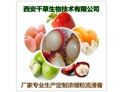 喜果提取物厂家生产动植物提取物浓缩易溶粉