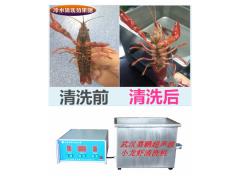 武汉嘉鹏生产供应超声波清洗小龙虾清洗机