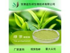 现货绿茶提取物10:1 绿茶提取物1kg起订  茶多酚