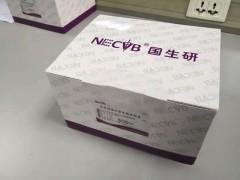 国生生物非洲猪瘟抗原检测试纸条 100袋/盒