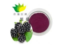 黑莓粉黑莓提取物