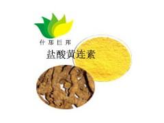 盐酸黄连素