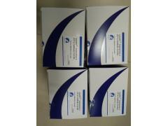 科研试剂美国Biostone塞尼卡谷/赛尼卡谷病毒ELISA