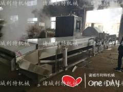 苹果枣清洗蒸煮机  速冻苹果枣加工设备厂家