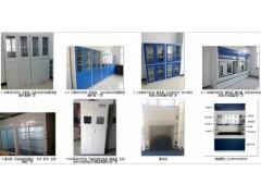 试剂样药品器皿气瓶柜通风柜橱全钢木PP生产厂家