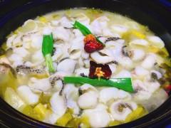 那里批发酸菜鱼底料 好酸菜鱼调料批发 优质酸菜鱼底料批发