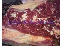 供应进口马肉马肋条马腿肉