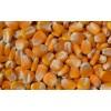 成都收购玉米大米小麦糯米高粱