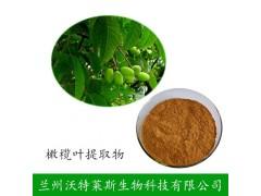 羟基酪醇20% 橄榄叶提取物 橄榄提取物