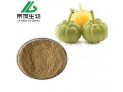 藤黄果 藤黄果提取物60% 羟基柠檬酸