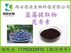 蓝莓提取物 25%花青素 多规格 源头厂家 蓝莓原料提取