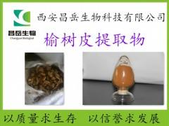 榆树皮提取物 昌岳源头厂家 现货包邮 量大价优 榆树皮粉